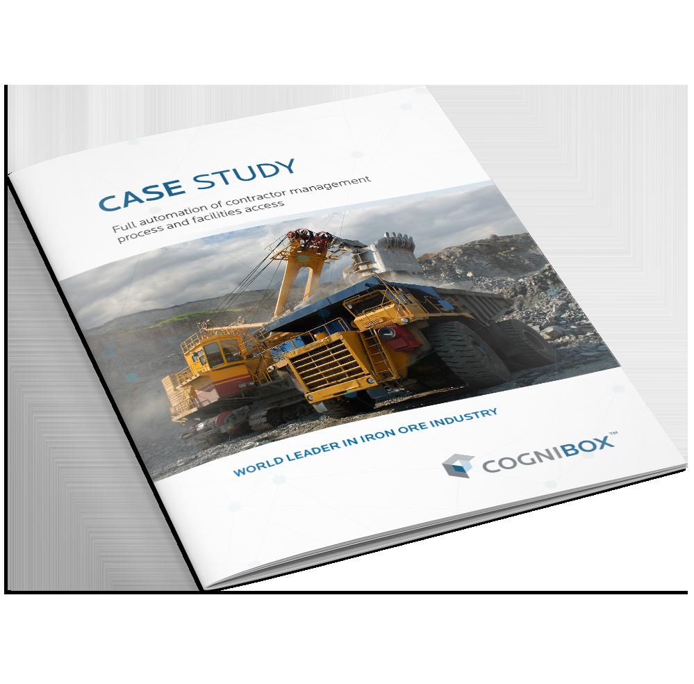 Iron Industry Case Study